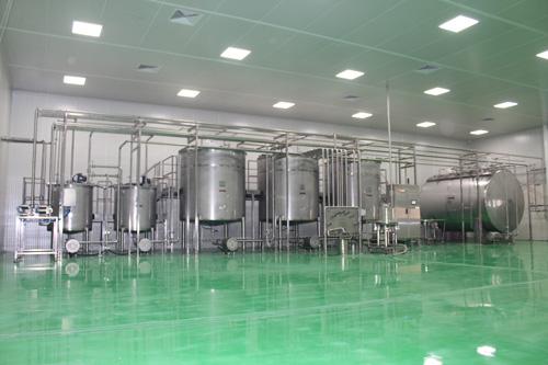 Production of unrefined mint oil