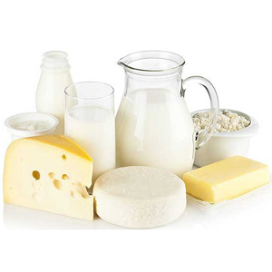 Dairy Product Manufacturing Miniplant INOXPA